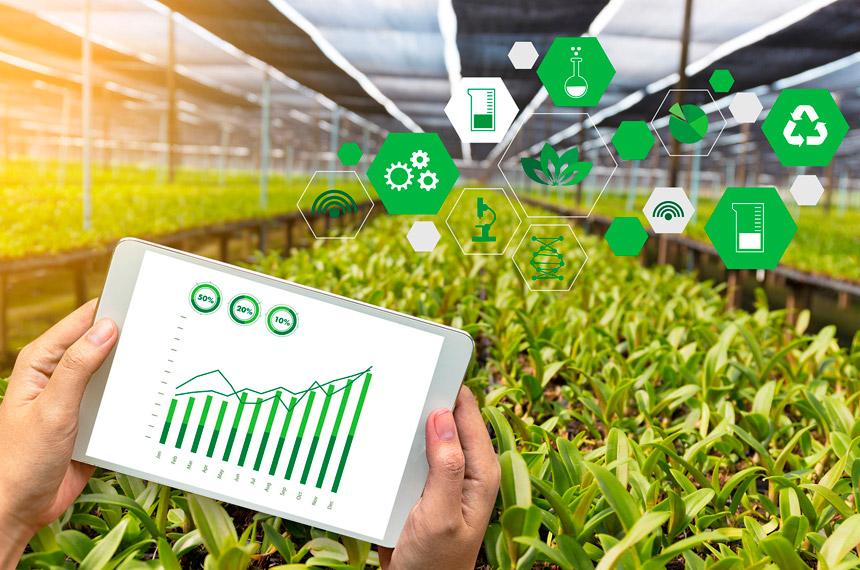 fao nicaragua tecnologia agricola