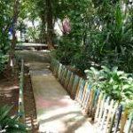 Concurso de Coplas en el Arboretum Nacional