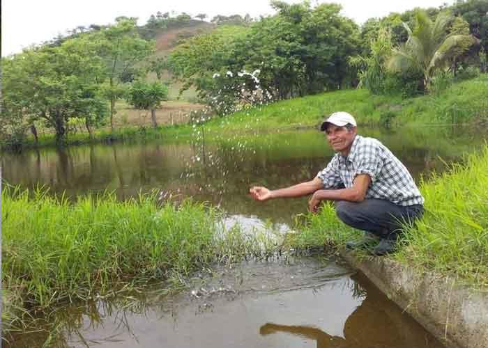 proyecto de cosecha de agua