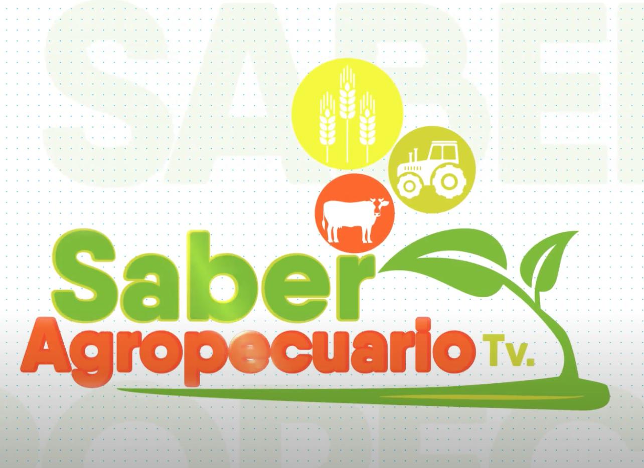 canal 6 saber agropecuario