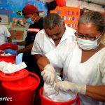 Nicaragua sobrecumple meta de jornada de desaratización