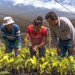 Presentan candidato a la presidencia del Fondo Internacional de Desarrollo Agrícola
