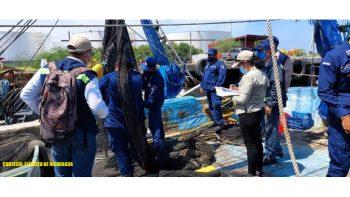 Fuerza Naval en inspección de dispositivos exclusores de tortugas